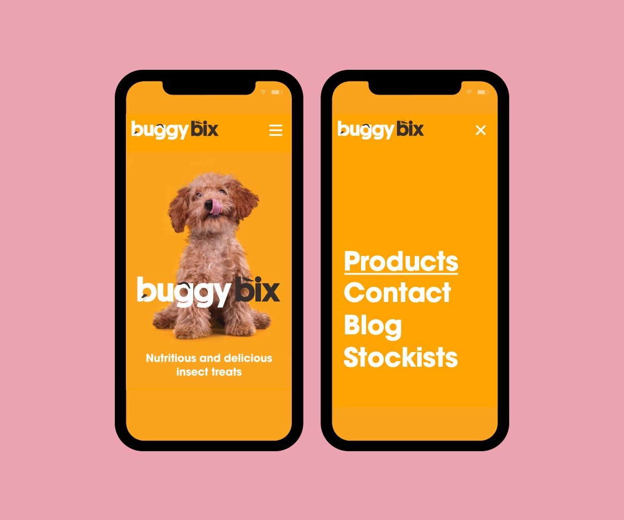 Website Design project image for pet food website design by Percept creative agencies Sydney, case study image F
