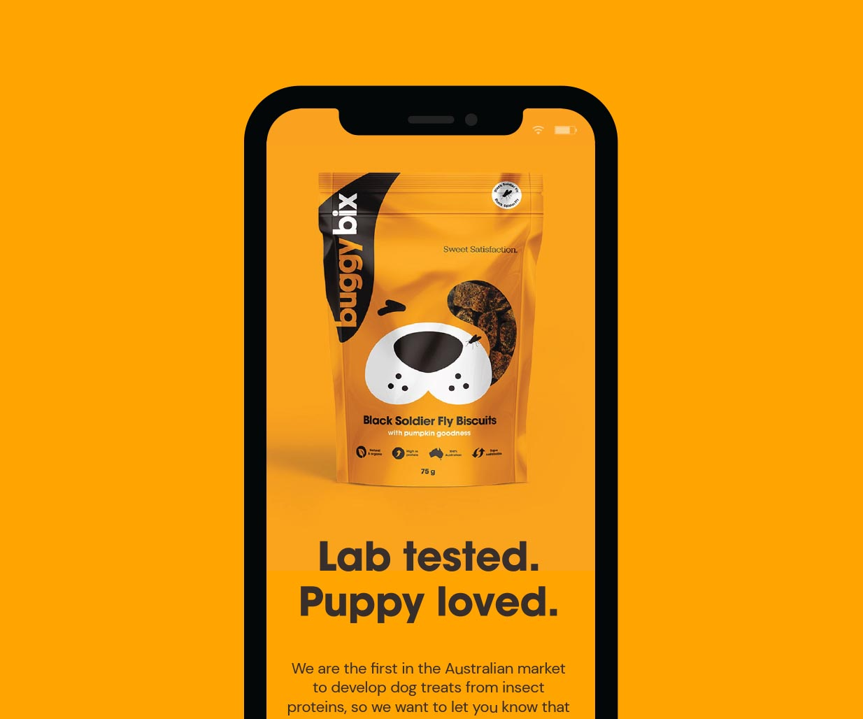 Creative Packaging Design project for pet care products brand Buggy Bix, Sydney, Australia, image H